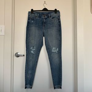 Lane Bryant Embroidered Skinny Jeans, 14R, Unworn